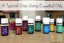 Essential Oils + / by Janice Barnes