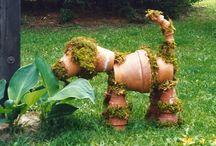 Trädgård - Garden