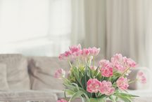 Interiors / by AnaToy