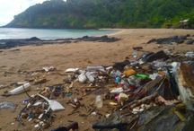 PLASTIC || in the Ocean / What's ending up at sea?