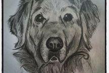 Pet sketches