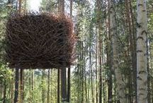 case sull'albero
