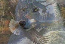 Native Americans / by Joy Mullins