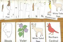 eğitici kartlar