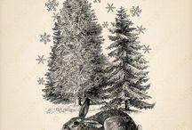 Silhouette christmas
