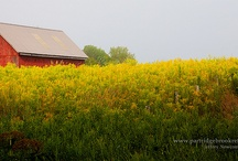 barns and outbuildings-2 / by Ron Moyers