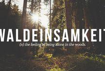 ☽ Waldeinsamkeit ☾