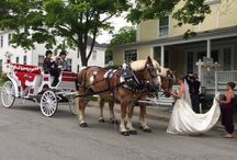 Weddings in Castine, Maine / From an intimate elopement to a private destination wedding, Castine, Maine offer the exceptional quality and service of larger destinations but with the discretion and privacy you deserve.