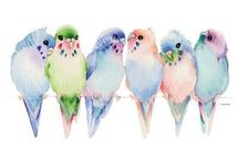 Watercolour birds in a line