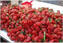 дача- ягоды