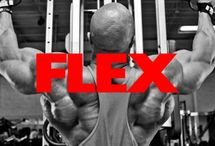 Muscle and Fitness / Weight training, supps, nutrition and recovery