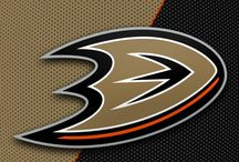 Anaheim Ducks Players