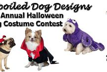 Halloween Contest / Go to Facebook.com/spoileddogdesigns to enter your dog or vote in our 2nd Annual Halloween Dog Contest. Winner gets $30 gift certificate for www.spoileddogdesigns.com