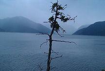 Camping in Norway / Steder i Norge jeg drømmer om at besøge