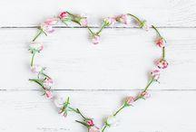 Valentine's Day / 0