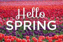 Petit Moment ♥ Season Spring - Lente / Petit Moment ♥ Spring season www.petitmoment.nl