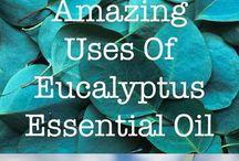 Essential Oils Health Benefits / Essential Oils Health Benefits and Uses - http://altgreengoodness.com