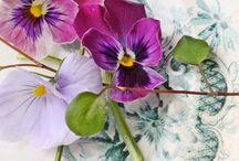 Flowers & Centrepieces
