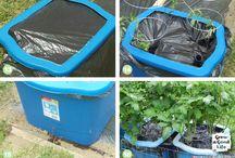 Gardening / composting, gardening, etc.