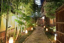 Bamboo garden idea