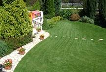 My Future Little Garden