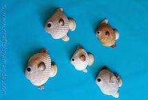 pez concha