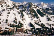 Our Beautiful Resort / From easy ski-out/ski-in access at the to a world-class spa, our buildings welcome you to stay night - or perhaps you're just needing a soothing massage after shredding some pow for the day before heading down the mountain.