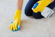 Carpet Cleaning in Davie, FL