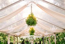 Reception| Decor & Design / Beautiful design Inspiration for your wedding or event.