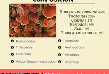 Fitoterapia / Como nos pueden ayudar las plantas