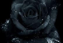 cierne kvety