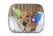 Golden Retriever Candy Tins / Some golden retriever candy tins that we sell in our shop!  These are a cute size for slipping into a purse or pocket, and come with your choice of mints or jellybeans.               Zazzle.com/AugieDoggyStore