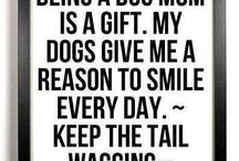 Being a Doggy Mom