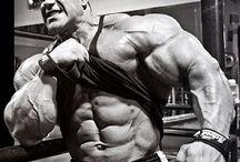 Bodybuilding / Board For Pro Bodybuilding Competitors