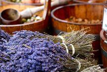 Bendico' eventi culinari / Bendico' eventi culinare è cucina a domicilio per soddisfare varie esigenze : Cene di lavoro, aperitivi, compleanni, lauree, anniversari, cene di lavoro e buffet.