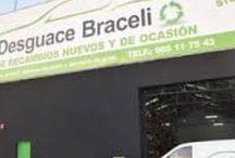 Desguaces Braceli / Expertos en el sector del reciclaje y demoliciones industriales. Desguace y gestión de residuos fomentando la preservación del medio ambiente.  http://www.braceli.com/