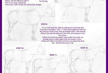 horse how to draw