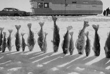 Fishing / by Doug Wozniak