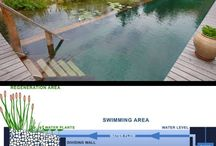 Natural Swimming pools for save water
