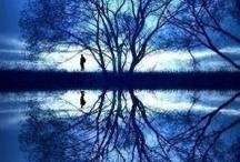 Reflect... (E)