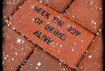 Quotes I like / by Teresa Haynes