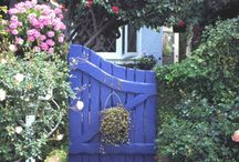 Gardening: It's all about color!