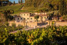 Company / #villacilnia, #ristorantemecenate, #latoilewellness&spa, #arezzo, #tuscany, #relais, #farm