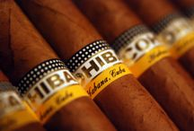 cubancigaronline.com / Visit this site http://cubancigaronline.com/ for more information on cohiba cuban cigars. Cigars are pleasure to smoke. Those who smoke cigars, cherish their cigars seriously. For many people, cigars are the symbol of indulgence in which they enjoy; or a time that these people celebrate or seal the deal. But for enjoying the cigar fullest, a smoker must have the knowledge of different varieties of cigars. Follow Us : http://cohibacubancigars.blogspot.com/