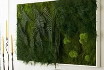Natural Decor / by Kristy Fox-hart