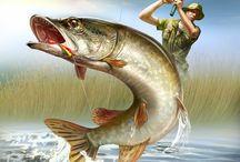 Рыбалка.Fishing.