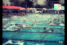 2013 Speedo Far Western Swimming Championships / by Swimming World