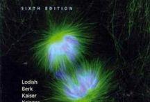 Medical Books - Basic Sciences