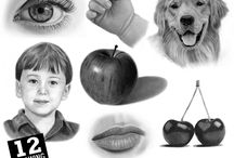 Online Drawing Classes / Graphite Pencil or Coloured Pencil classes.   Beginners and those with some drawing experience will learn how to draw with step-by-step instructions.