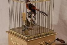 Gaiolas para aves